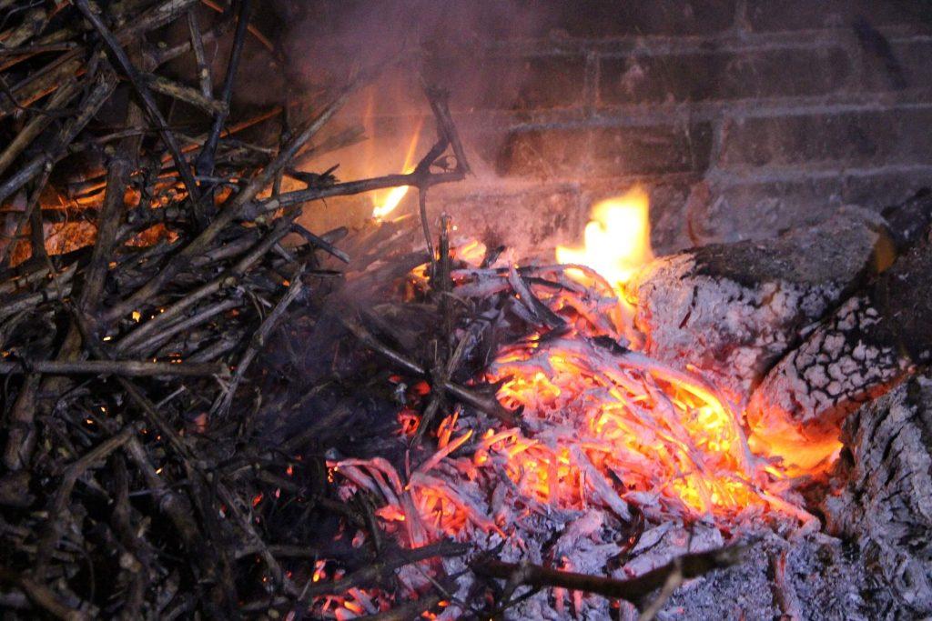 pinchos de lechazo al sarmiento cepas de vid en mesón asador Carlos en Traspinedo Valladolid